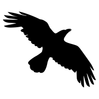 soaring crow silhouette